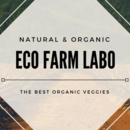 Eco Farm Labo