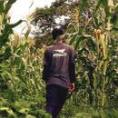 イニアビ農園