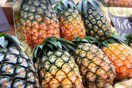 無農薬パイナップル6個セット