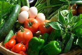 【お試し】卵ソムリエの放し飼い自然卵4個と 旬の無農薬野菜2種の セット