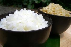 アイガモ米 白米10㎏ 新米