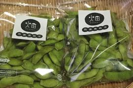 【受付期間10月1日〜10月15日】「畑家族」丹波黒枝豆250g×2袋入