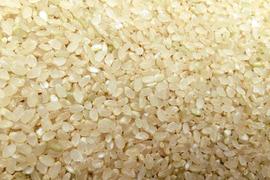 アイガモ米 五分搗米5㎏ 新米
