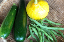 季節のお野菜お一人さまセット 3種類