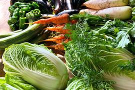 丹波篠山美味野菜4品+おまけの詰め合わせセット