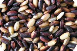 アントシア二ンが豊富な農薬不使用黒米*1kg