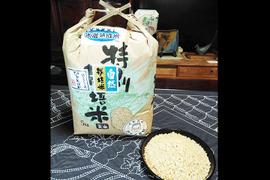 米の旨味たっぷり【自然栽培米】ひとめぼれ20kg