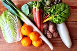 こだわり抜いた新鮮四国野菜!厳選野菜セット【Lサイズ】