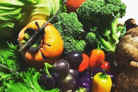 【完全無農薬】旬の季節野菜セット(約8品)