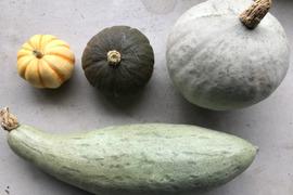 高級かぼちゃを含む、珍かぼちゃ4種セット