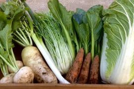 【鍋にオススメ♪】冬野菜セット4〜5名用(約8品)