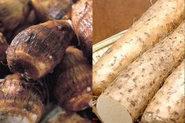 完全無農薬*長芋と里芋のセット各1.5kg