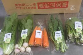 筑波山の麓からお届け!有機野菜セット(5品)