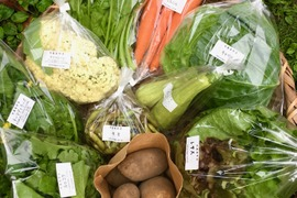 【無農薬】採れたての旬の野菜*大(7-10品目)