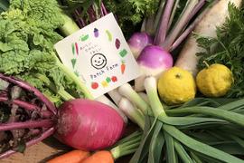 ≪畑をぐるっと収穫≫旬彩野菜バスケット*80サイズ