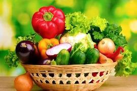【お中元・お歳暮・ご贈答対応OK!】☆畑直送☆こだわり有機栽培野菜プレミアムセット