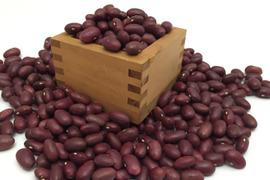 自家種 金時豆500g