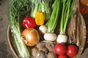 旬!季節のおまかせ野菜BOX