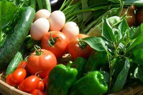 【湘南】卵ソムリエの放し飼い自然卵10個と旬の無農薬野菜3種のセット