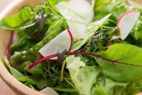 【福岡県糸島産】朝獲れ*サラダ用野菜セット