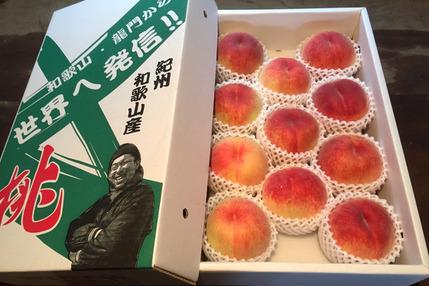 無農薬栽培の「美味しい桃」 / 和歌山県産 / 小箱 (約6〜8個 / 約2kg)