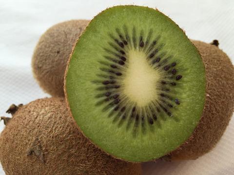 【有機JAS】無農薬キウイフルーツ「ヘイワード」ご家庭用(2kg)