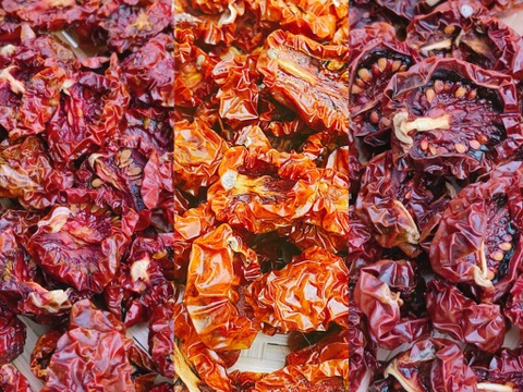 【熱海産♨農薬不使用】 無添加ドライミニトマト 3種食べ比べセットLL