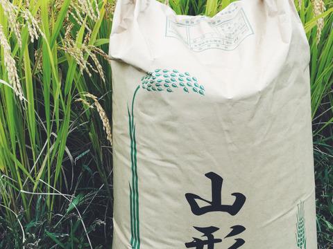 【H30新米】【白米】つや姫 5kg 山形県飯豊町産 特別栽培米