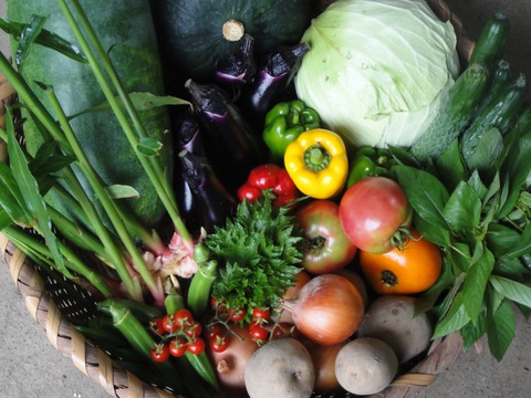 小川町の野菜+穀物+加工品セット(1〜3人分)