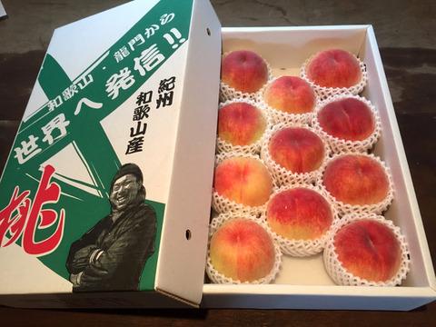 無農薬栽培の「美味しい桃」 / 和歌山県産 / 4kg (約16〜22個)