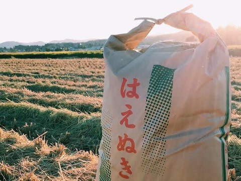 【お中元に!】29年産「はえぬき」玄米5kg