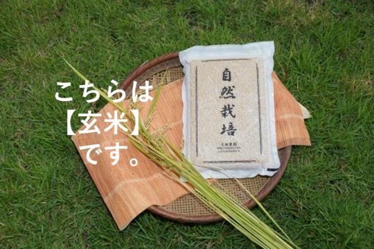 ※2017年産につき特別価格【名水に育まれた自然栽培米】『元田旭』玄米   5㎏