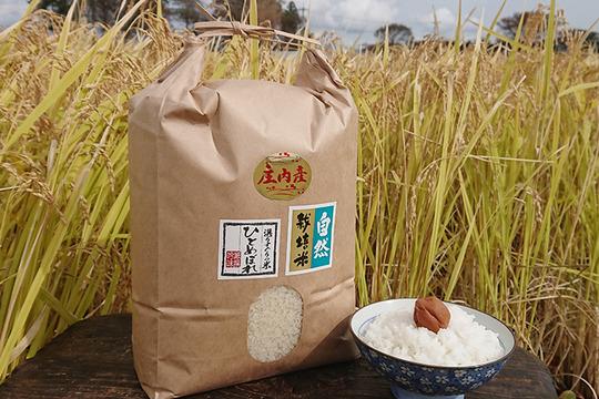【上白精米 | 5kg】米の旨味たっぷり 自然栽培米 ひとめぼれ