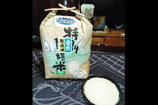 【7分つき精米 | 10kg】米の旨味たっぷり 自然栽培米 ひとめぼれ
