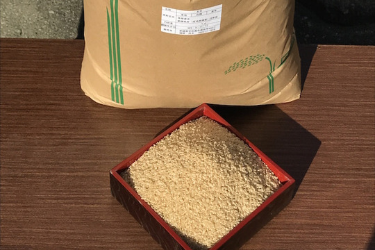 【玄米】自家採種のみで育ったお米 30kg