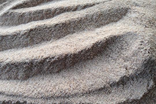 《八ヶ岳のオーガニック穀物》ライ麦 (全粒粉) 500g