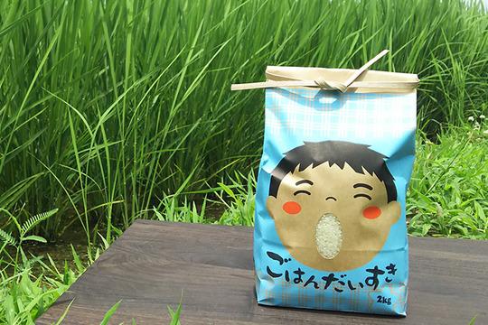 古代の稲作発祥の地からお届けする「医農米こしひかり」【玄米】5kg