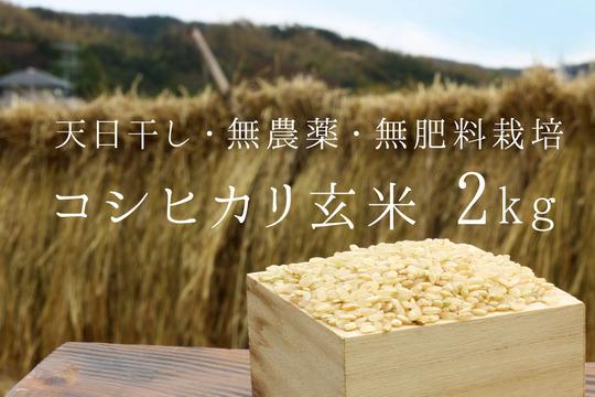 【無農薬・無肥料 生命力溢れる】コシヒカリ玄米2kg