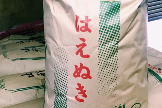 【H30新米】【玄米】はえぬき 5kg 山形県飯豊町産 特別栽培米