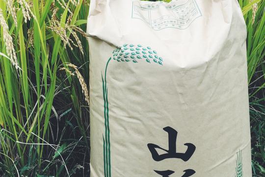 【H30新米】【白米】つや姫 10kg 山形県飯豊町産 特別栽培米