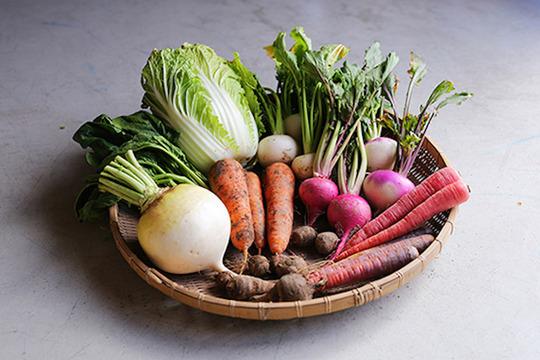 [有機JAS認証] 季節野菜BOX(8-10品)