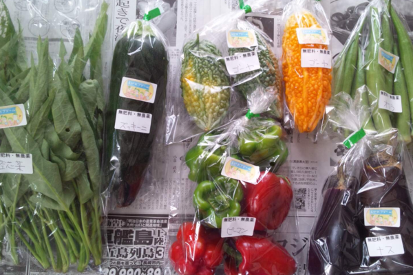 カラダの中から笑顔になる季節の野菜セット(5-6種類)
