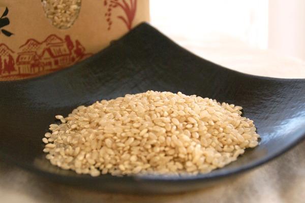 【新米】特別栽培米コシヒカリ玄米5㎏