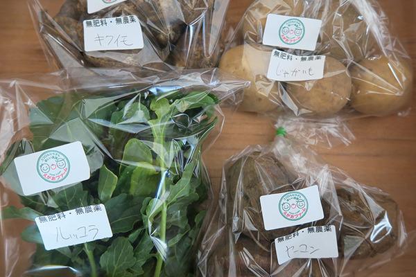 カラダの中から笑顔になる季節の野菜セット(3種類)
