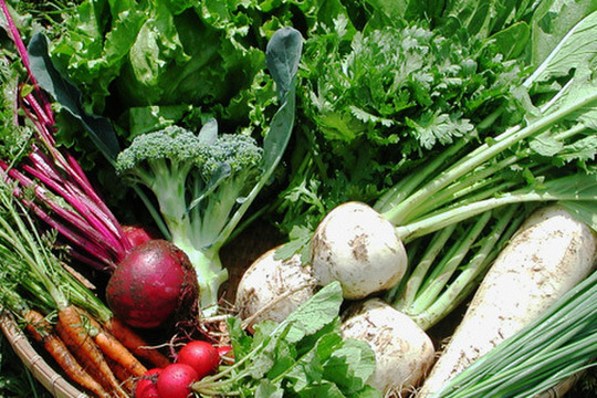 【くさぶえ農園】旬*お試し野菜セット(6品目)