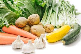 徳島産*全国500世帯に直販!人気のお野菜セット