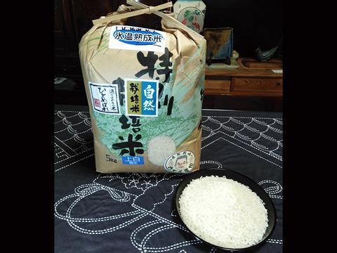 【上白精米   10kg】米の旨味たっぷり 自然栽培米 ひとめぼれ