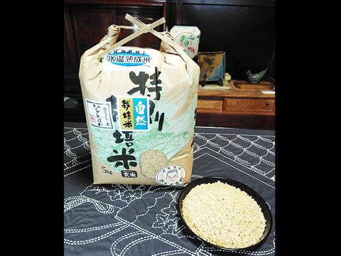 【玄米 | 5kg】米の旨味たっぷり 自然栽培米 ひとめぼれ