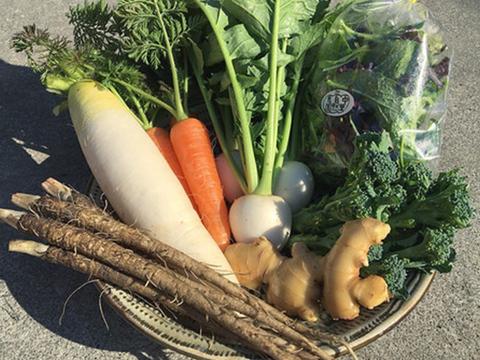 無農薬*お野菜詰め合わせBOX(8〜10種類)