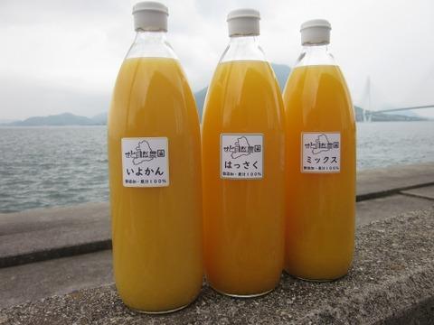 かんきつジュース3種類飲み比べセット【無添加・果汁100%】